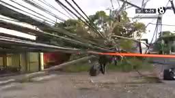 Reportan 121 postes de electricidad quebrados por choques