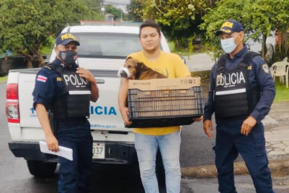 Canino rescatado por la Fuerza Pública