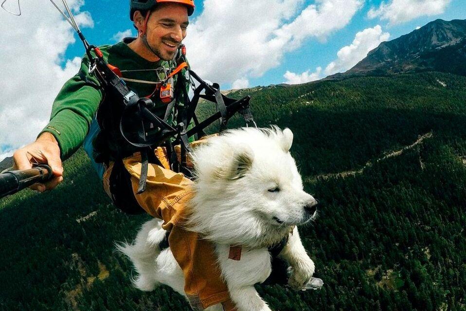 Ouka, el perro aventurero que vuela en parapente